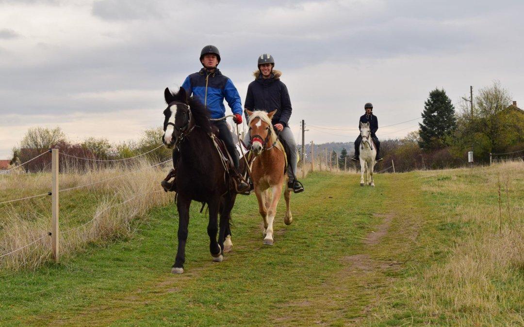 Полудневен 4 часов преход на коне