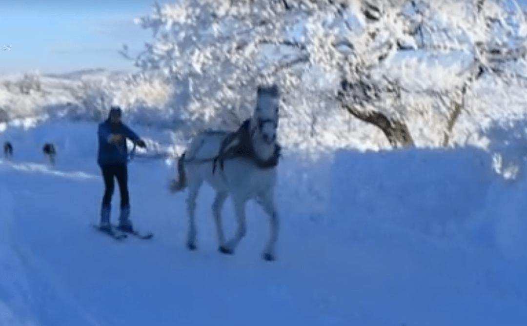 На ски с Джентъл ;)
