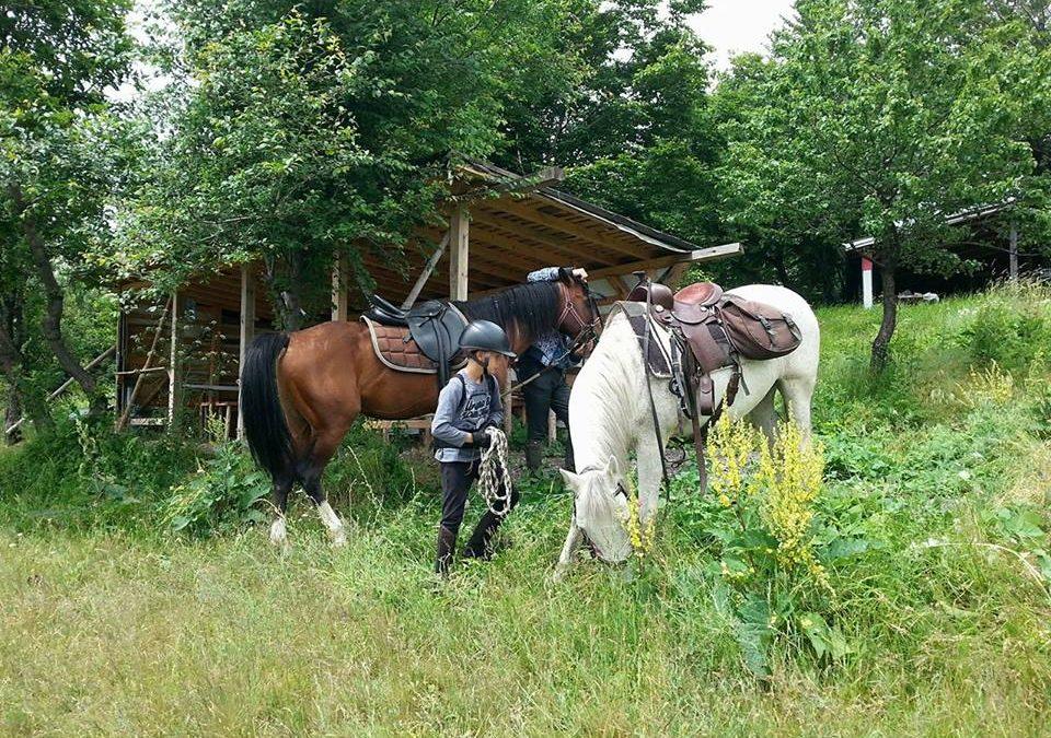 Благотворителен ден с езда