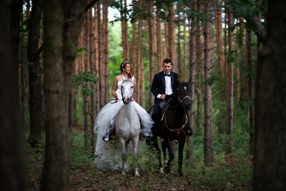 Благотворителни фотосесии с коне