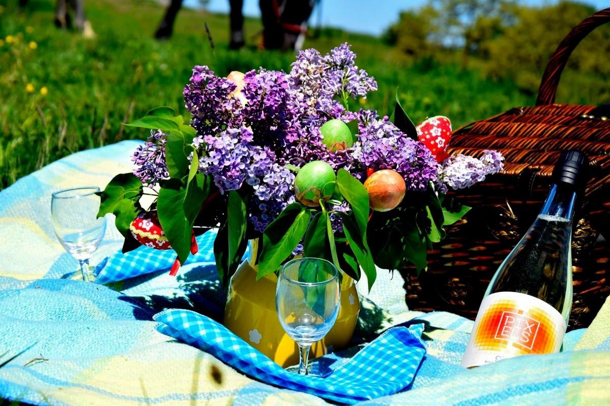 Vaucher-piknik2