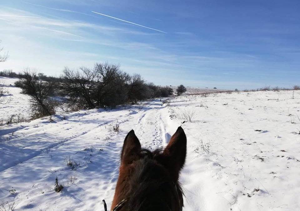 14 Февруари – Ден на влюбените с езда, Ебру и вкусна храна